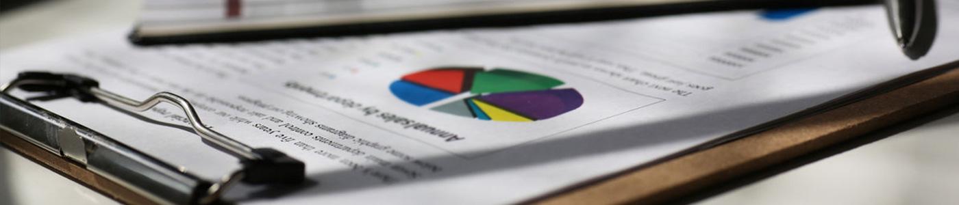 Bilancio Sociale Arca Service Impresa Sociale